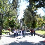 Descartados, estacionamiento y tala de árboles en el jardín Colón